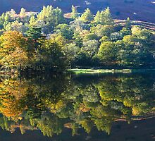 The magic of autumn at Rydal Water, English Lake District by Martin Lawrence