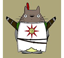 Totoro praise the sun Photographic Print