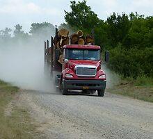 Logging Truck by WildestArt