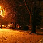 """A Snowy Evening in Knoxville"" (no.4, from this series)... products  by © Bob Hall"