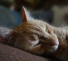 Sweet Dreams by vigor