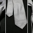 It's a Tie! - Triptych by Trish Mistric