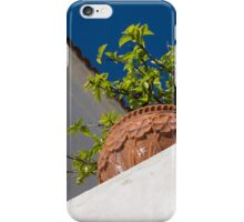 Contemplating Mediterranean Vacations - Red Tile Roofs and Terracotta Flowerpots iPhone Case/Skin