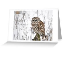 Special visitor Greeting Card