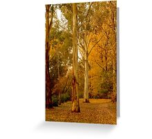 Bright in Autumn Greeting Card