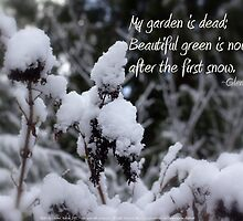 my garden is dead, snow by PoemsProseArt