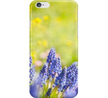 Blue Muscari Mill bunches of grapes  iPhone Case/Skin