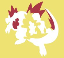 【13800+ views】Pokemon Totodile>Croconaw>Feraligatr Kids Clothes