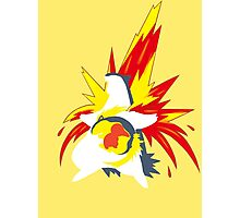 【20600+ views】Pokemon  Cyndaquil>Quilava>Typhlosion Photographic Print