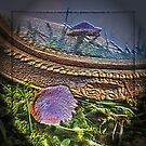 fairyland by sarnia2
