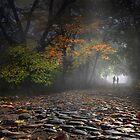 Peaceful Stroll by Igor Zenin