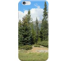 Stand of Conifers iPhone Case/Skin