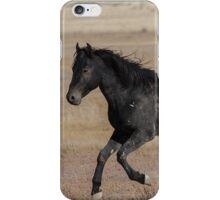 A Proud Stallion  iPhone Case/Skin