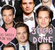 Sebastian Stan BABE Sticker
