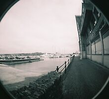 Falmouth by Roxy J