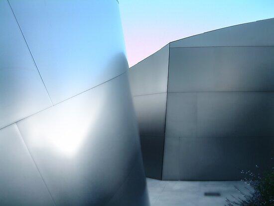 frank gherry 2 by Paul Vanzella