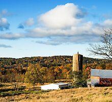 Pennsylvania Charm 4 by Tom Gotzy