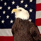 BALD EAGLE & FLAG by TomBaumker