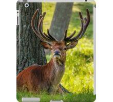 Red Deer Stag iPad Case/Skin