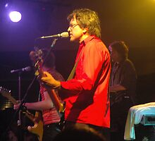 The Whitlams 05 by Tempest