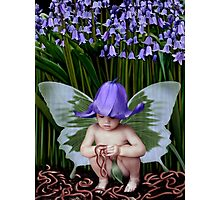 Worms and Bluebells Photographic Print