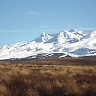 Majestic Mt. Ruapehu by chOcOlateBubble