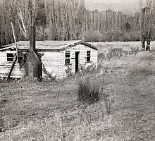 Abandoned House, Hops Fields, Tasmania by Brett Rogers