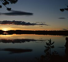 Midnight Sun by Sally R