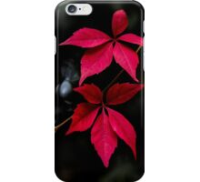 Night Flowers 3 iPhone Case/Skin