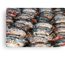 Crabs in a row Canvas Print