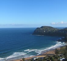 Whale Beach From Above by justineb