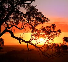 Sunset over Lysterfield by SherbrookePhoto