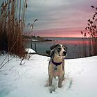 Emma - At Sunset by T.J. Martin