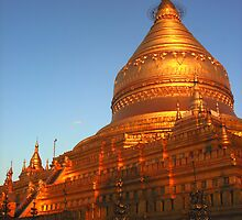 Shwezigon Pagoda, Burma by Murray Newham