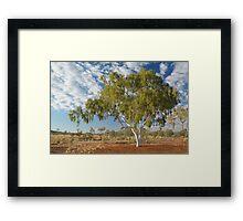 Ghost Gum,Batton Hill North Simpson Desert Framed Print