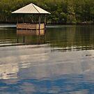Restful Stop on the River  by John  Kapusta