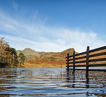 Blea Tarn and Fence, Lake District. UK by Heidi Stewart