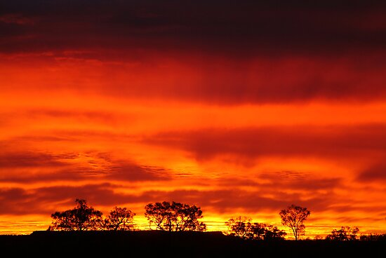 Firey Sunrise, Batton Hill, North Simpson Desert by Joe Mortelliti