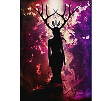 Deer Dreams Photographic Print