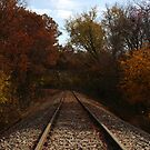 Railroad tracks by bassdmk