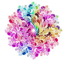 Rainbow Watercolor Paisley Flower Photographic Print