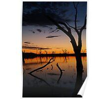 Sunrise, Lake Fyans Grampians Poster