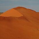 Sandhill North Simpson Desert,N.T. by Joe Mortelliti