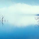 blue water 6 by kristin diemer