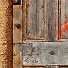 Door by Joe  Mortelliti