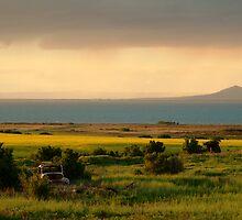 Sunset Corio Bay by Joe Mortelliti