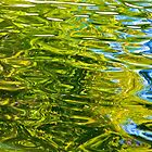 Rippled Reflections by John Butler