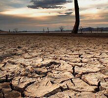 The Big Dry by David Haviland