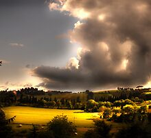 Umbria Hills by Paul Vanzella