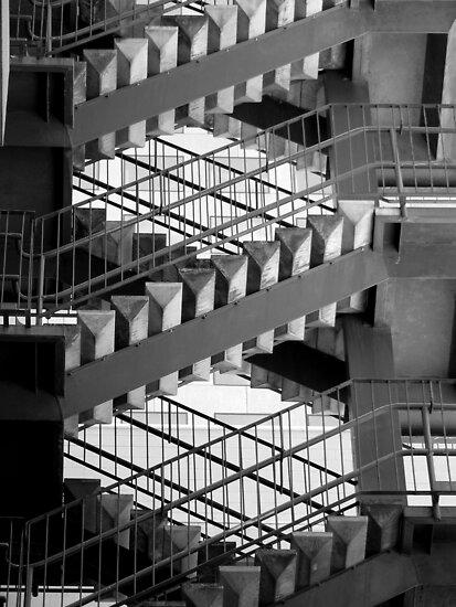 Escher by Shannon Mowling